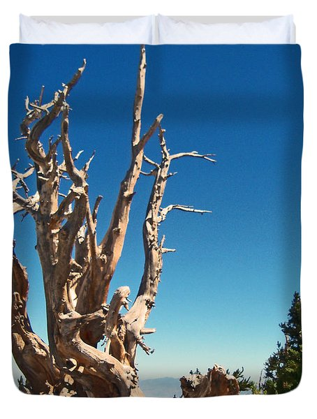 Duvet Cover featuring the photograph Lone Bristlecone by Alan Socolik