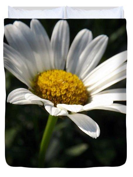 Lone Daisy Duvet Cover by Sara  Raber
