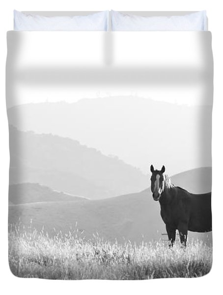 Lone Horse Duvet Cover by B Christopher