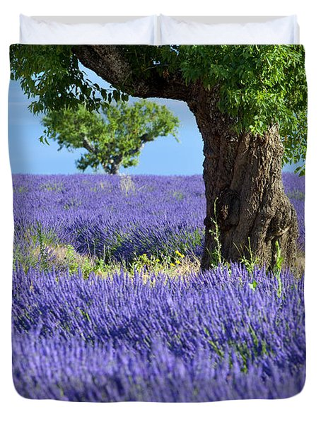 Duvet Cover featuring the photograph Lone Tree In Lavender by Brian Jannsen