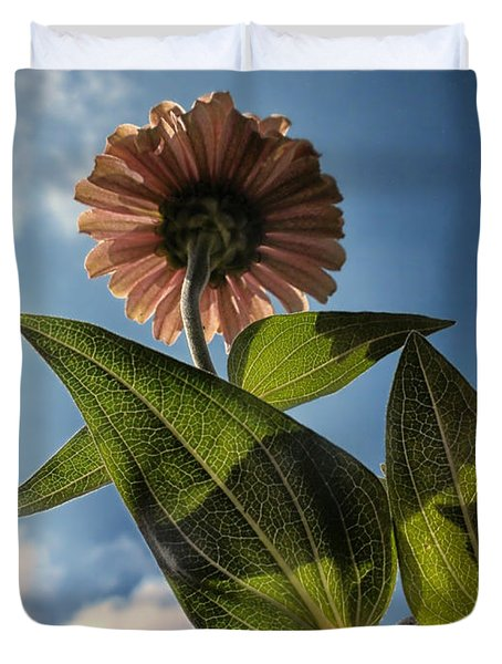 Lone Zinnia 01 Duvet Cover by Thomas Woolworth