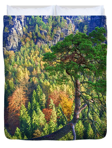 Lonely Tree In The Elbe Sandstone Mountains Duvet Cover