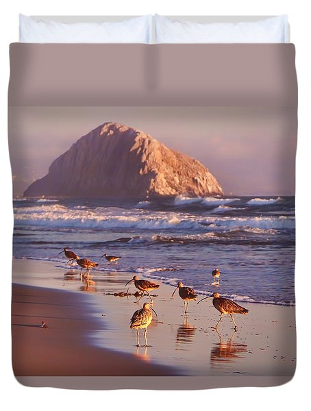 Long Billed Curlew - Morro Rock Duvet Cover