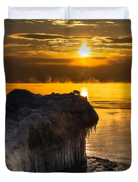Long Cold Winter Duvet Cover by James  Meyer