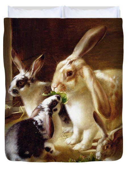 Long-eared Rabbits In A Cage Watched By A Cat Duvet Cover by Horatio Henry Couldery