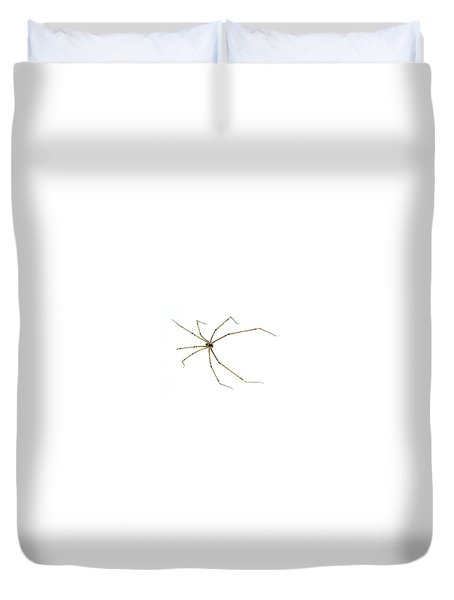 Long-legged Spider Duvet Cover