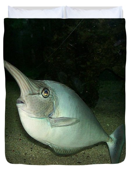Long Nose Fish Duvet Cover by Sara  Raber