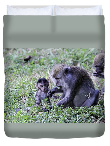 Duvet Cover featuring the photograph Long Tailed Macaque Family by Shoal Hollingsworth