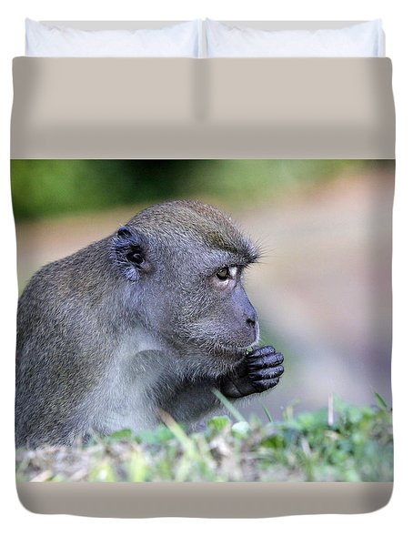 Duvet Cover featuring the photograph Long Tailed Macaque Feeding by Shoal Hollingsworth