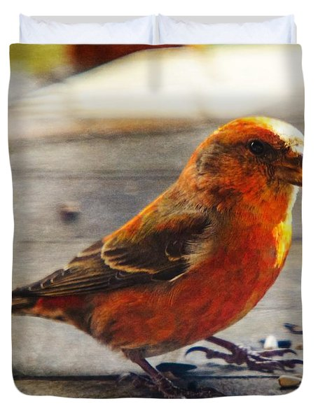 Look - I'm A Crossbill Duvet Cover