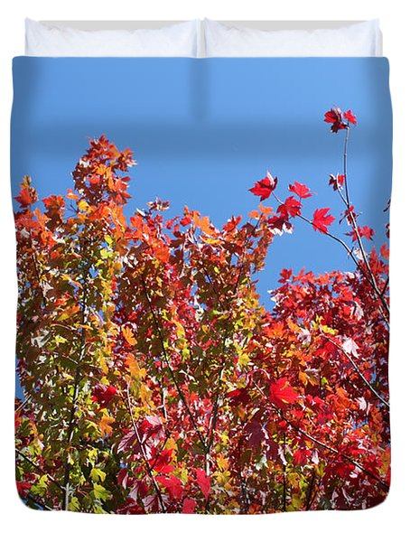 Duvet Cover featuring the photograph Looking Upward by Debbie Hart
