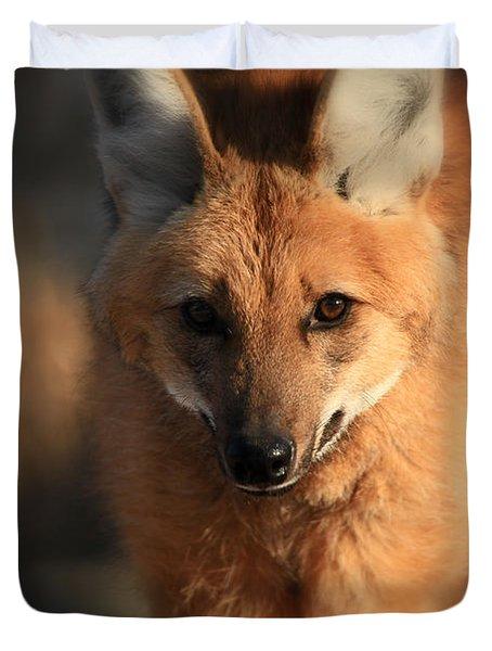 Looks Like A Fox Duvet Cover by Karol Livote