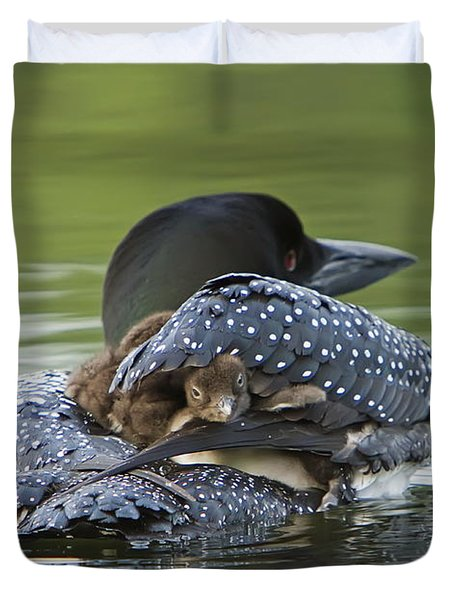 Loon Chick - Peek A Boo Duvet Cover