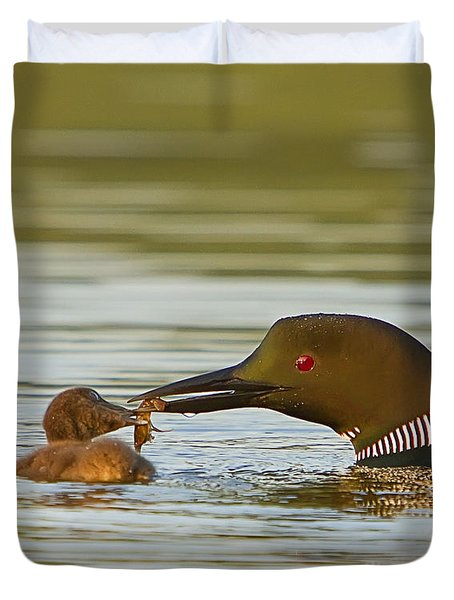 Loon Feeding Chick Duvet Cover by John Vose