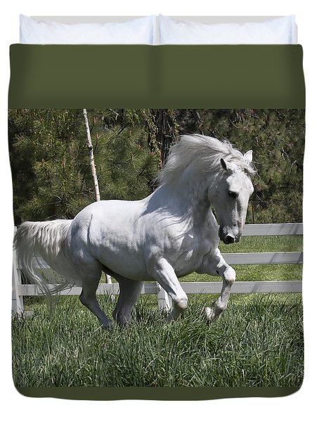 Duvet Cover featuring the photograph Loose In The Paddock 5594 by Wes and Dotty Weber