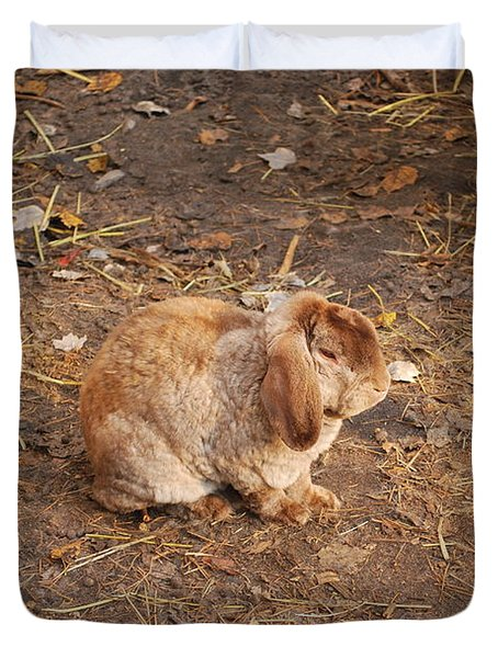 Duvet Cover featuring the photograph Lop Eared Bunny by Bob Sample