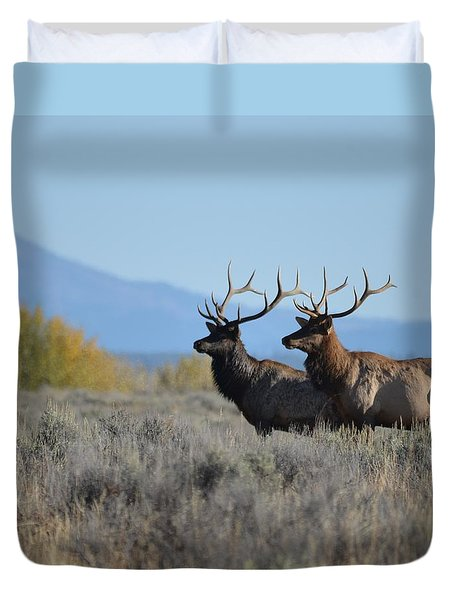 Lords Of Autumn Duvet Cover