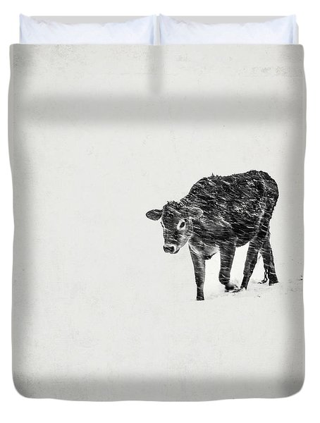 Lost Calf Struggling In A Snow Storm Duvet Cover by Edward Fielding