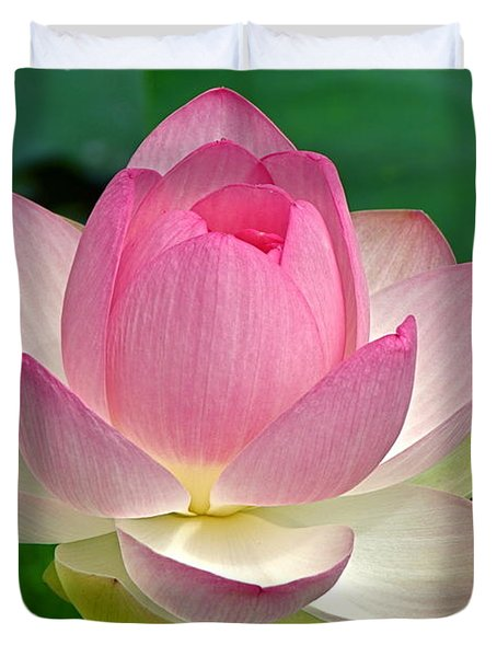 Lotus 7152010 Duvet Cover