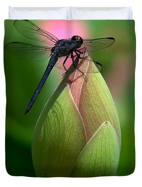 Lotus Bud And Slatey Skimmer Dragonfly Dl006 Duvet Cover