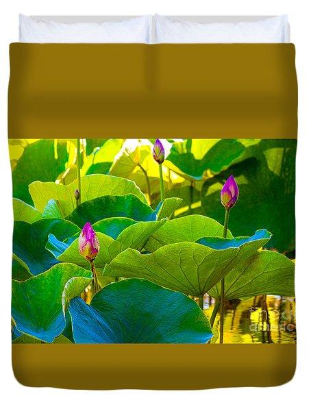 Lotus Garden Duvet Cover by Roselynne Broussard