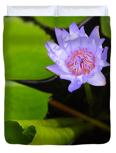 Lotus Flower And Lily Pad Duvet Cover by Adam Romanowicz