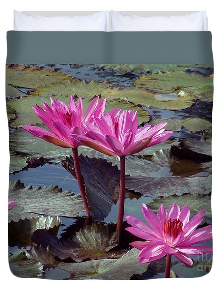 Lotus Flower Duvet Cover by Sergey Lukashin