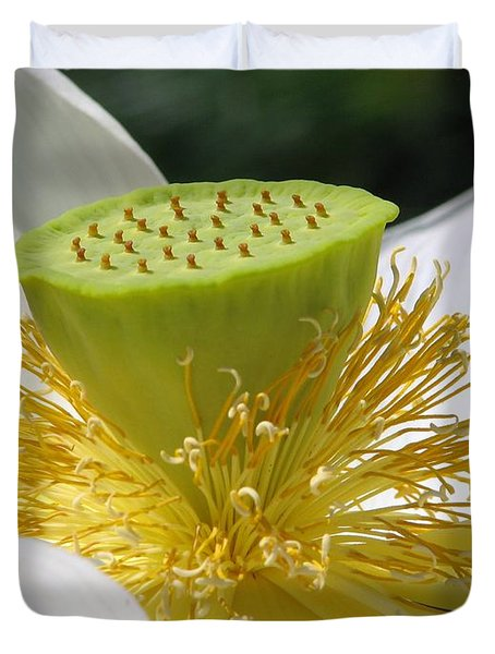 Lotus Flower With Pod Duvet Cover by Eva Kaufman