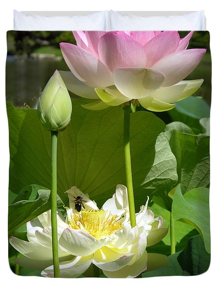 Lotus In Bloom Duvet Cover by John Lautermilch