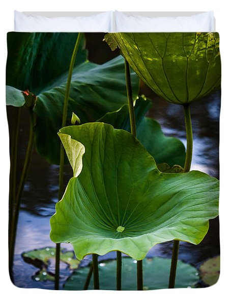 Lotuses In The Evening Light. Vertical Duvet Cover by Jenny Rainbow