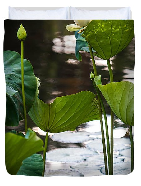 Lotuses In The Pond Duvet Cover by Jenny Rainbow