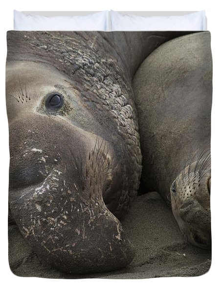 Love  Duvet Cover by Duncan Selby