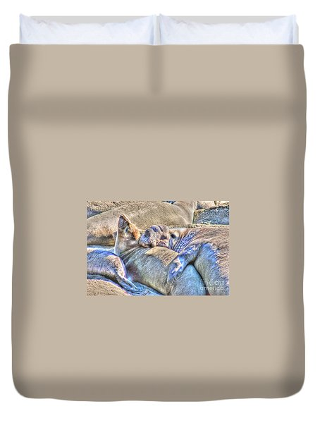 Love Hug - San Simeon California Duvet Cover