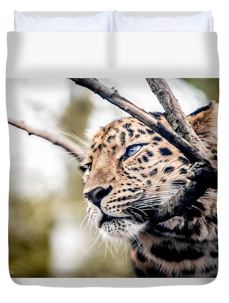 Duvet Cover featuring the photograph Love Panther Iv by Stwayne Keubrick