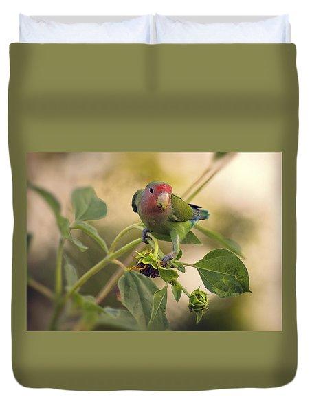 Lovebird On  Sunflower Branch  Duvet Cover by Saija  Lehtonen