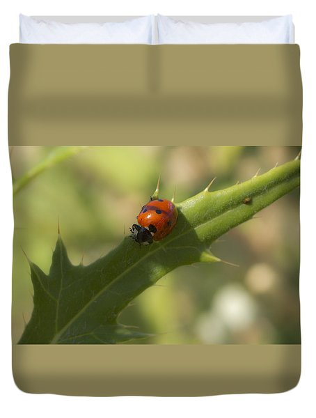 Lovely Lady Bug Duvet Cover by Shelly Gunderson