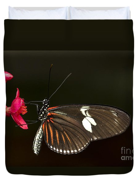 Lovely Longwing Duvet Cover by Bryan Keil