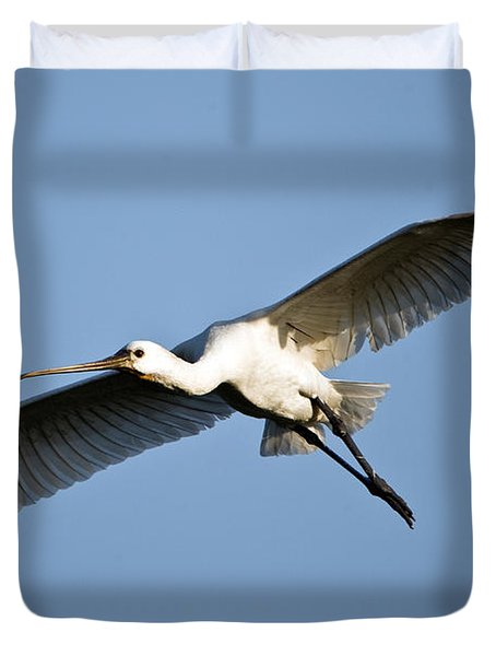Low Angle View Of A Eurasian Spoonbill Duvet Cover