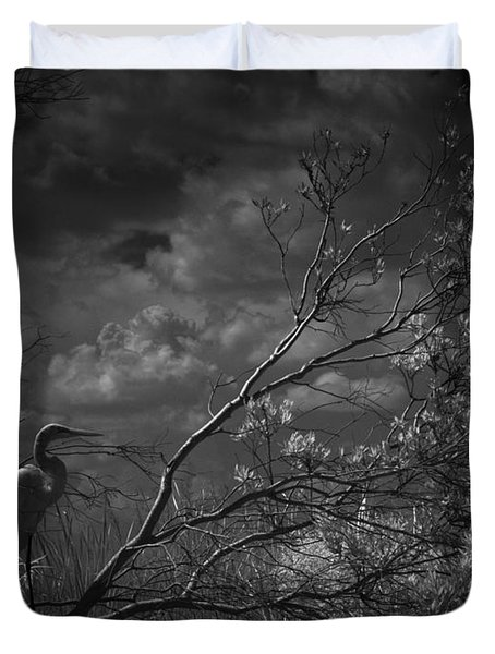 Loxahatchee Heron At Sunset Duvet Cover by Bradley R Youngberg