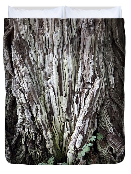 Lucky Tree Duvet Cover by Amanda Barcon