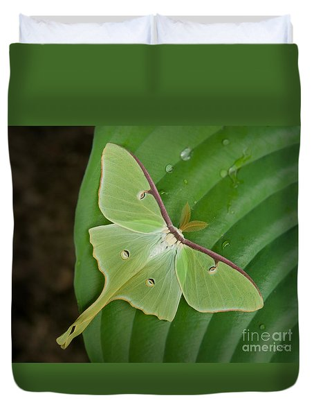 Duvet Cover featuring the photograph Luna Moth by Alana Ranney