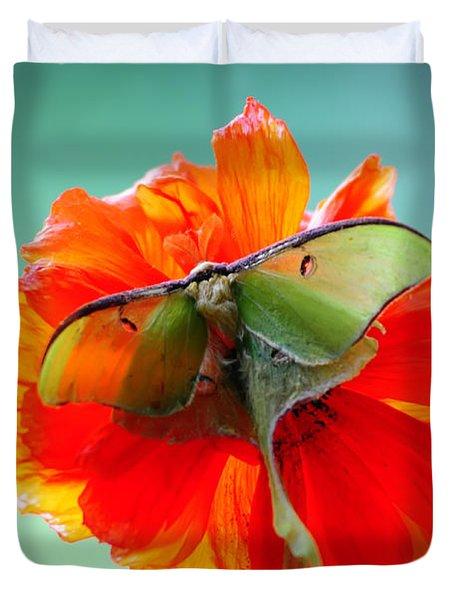 Luna Moth On Poppy Aqua Back Ground Duvet Cover