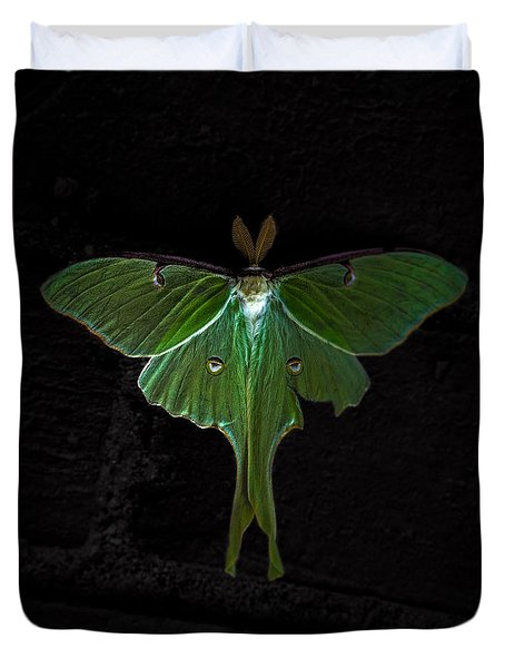 Lunar Moth Duvet Cover by Bob Orsillo