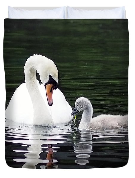 Lunchtime For Swan And Cygnet Duvet Cover