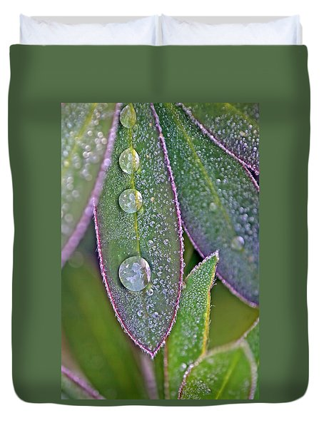 Lupin Leaves And Waterdrops Duvet Cover