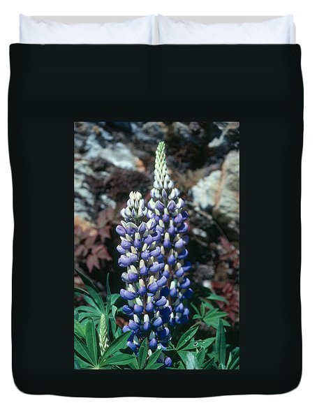 Lupine 2 Duvet Cover by Andy Shomock