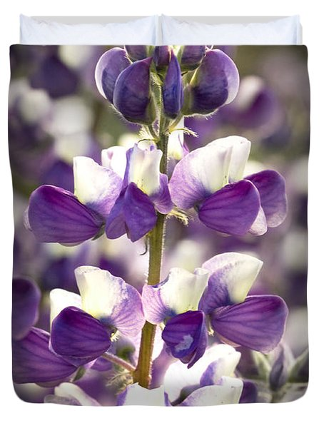 Duvet Cover featuring the photograph Lupine Wildflowers by Sonya Lang