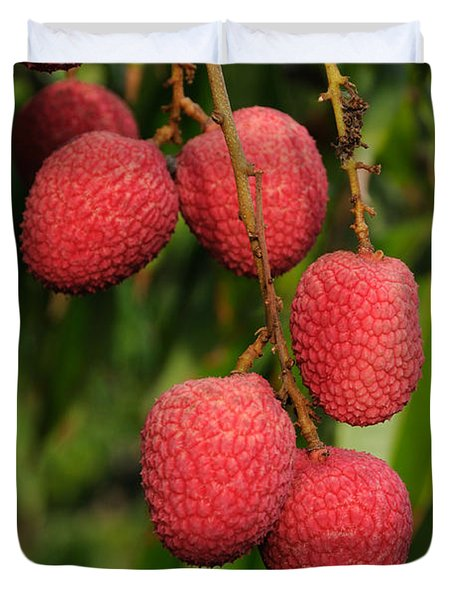 Lychee Fruit On Tree Duvet Cover by Bradford Martin