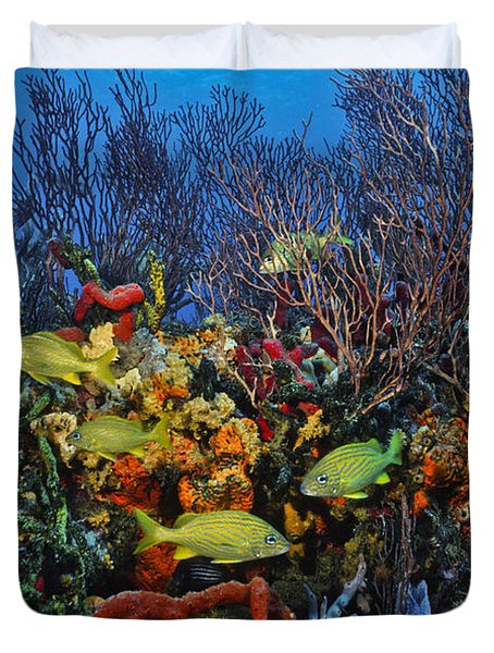 Lynns Reef On A Perfect Day Duvet Cover