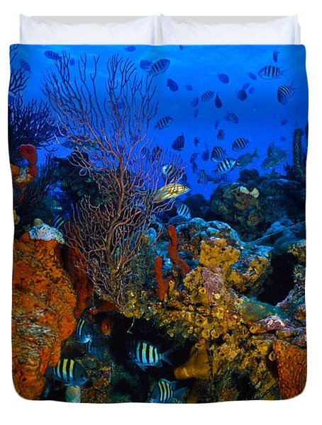 Lynns Reef Duvet Cover